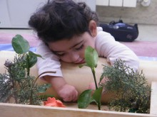 La Red de Ciudadanía Activa ASPACE se extiende a la infancia con parálisis cerebral para fomentar su autodeterminación y participación